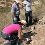 Trabajos arqueológicos en el Cerro de la Fuente. :: J.F.ROBLES